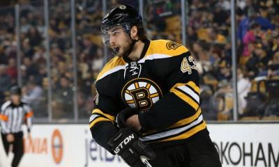 NHL: DEC 23 Predators at Bruins