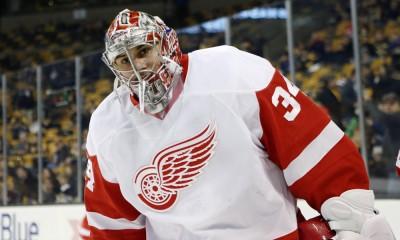 NHL: DEC 29 Red Wings at Bruins