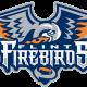 Flint Firebirds logo (Photo Credit: Wikipedia)